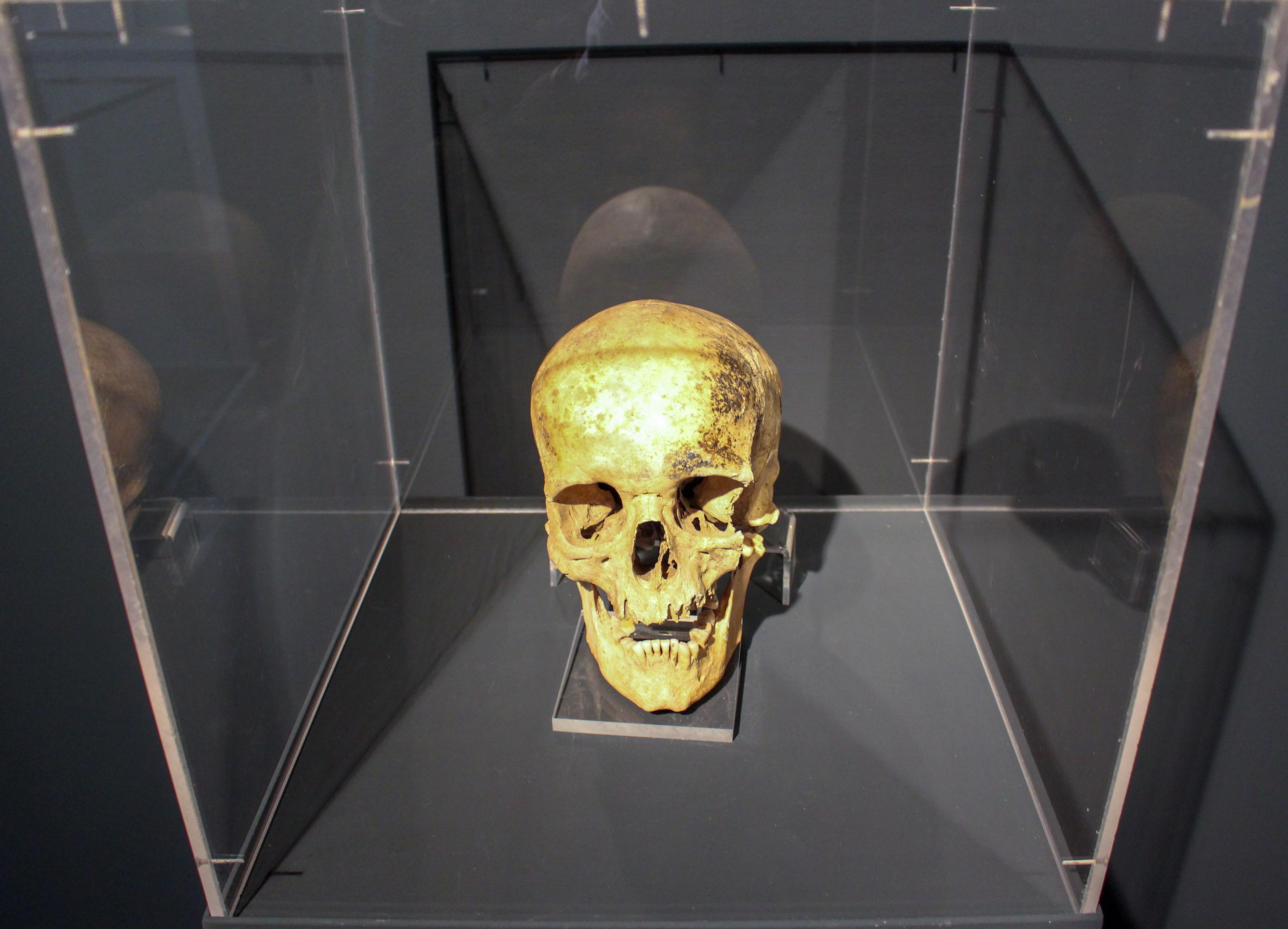 El Museo de Reproducciones de Bilbao inaugura una exposición que estará ubicada por primera vez en dos localizaciones diferentes