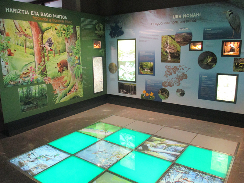 PARKETXEA, THE INTERPRETATION CENTRE OF GORBEIA NATURAL PARK 2