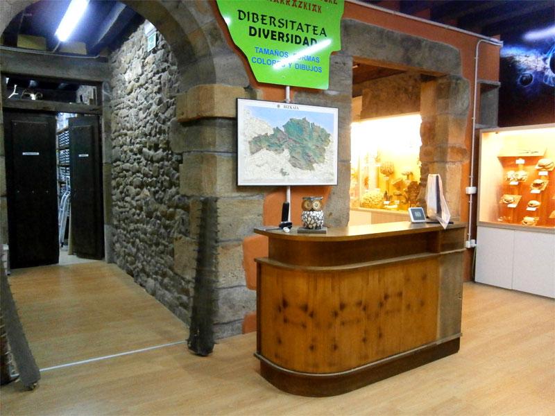 Hontza Museoa, Museo de Ciencias Naturales del Duranguesado